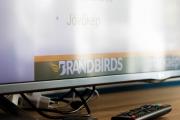 BrandBirds_markaepito_workshop_0166061